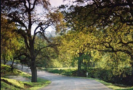 Tejon Ranch, Lebec, CA