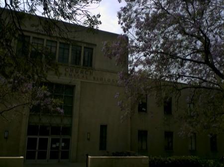 Jacarandas at Caltech