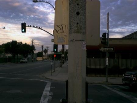 OG pole & signgraf