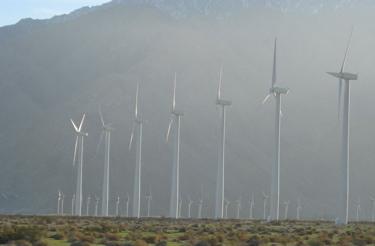 Wind Farm double row