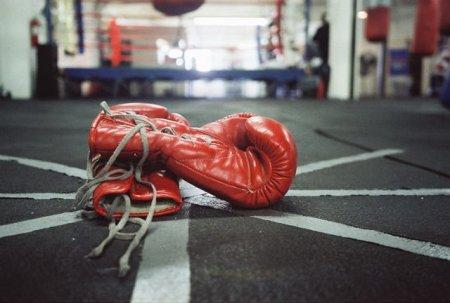 boxingglovesresting